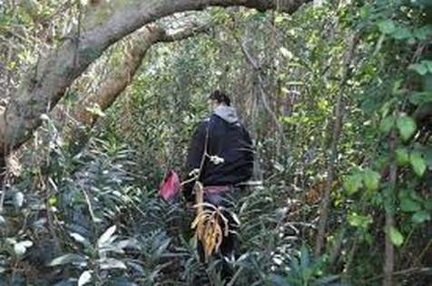 العثور على جثة اربعيني معلقة بشجرة بمدينة بركان