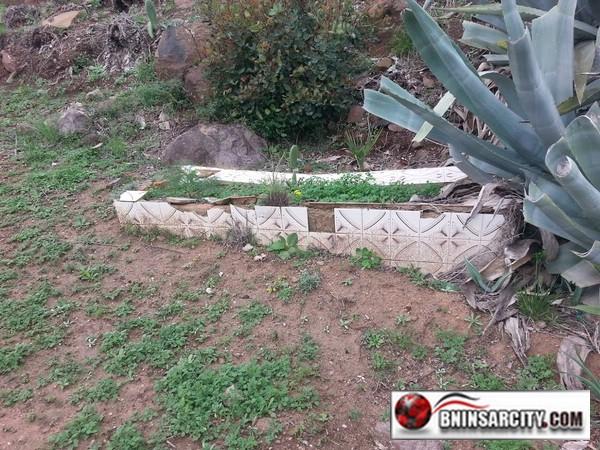 """مقبرة سيدي موسى""""غاسي"""" ببني انصار طالها الإهمال"""