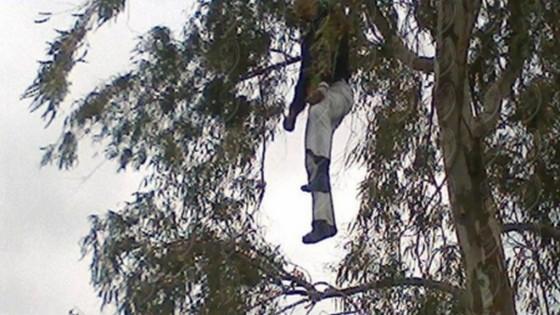 العثور على شاب من جماعة بويافار مشنوقا في شجرة ببني شيكر