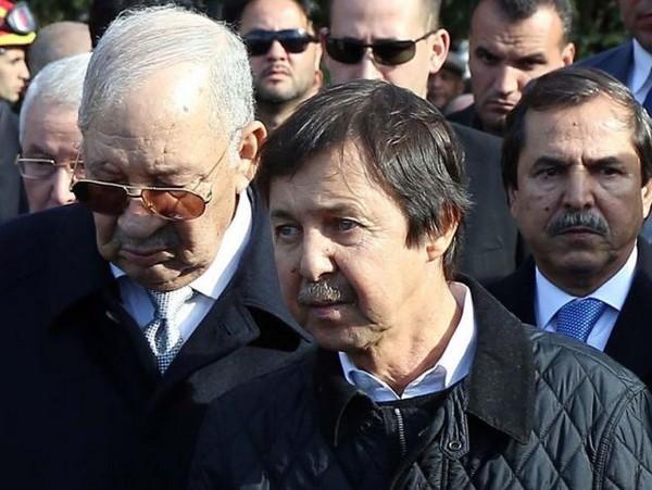 شقيق بوتفليقة سعيد بوتفليقة الصوت الوحيد المسموع لرئاسة الجزائر