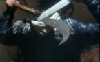 ساكنة بني انصار وفرخانة تطالب السلطات الامنية القيام بحملة ضد السلاح الابيض: كريساج