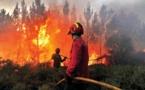 حريق غابوي بإسبانيا:يدمّر  لحد الآن على أزيد من 1747 هكتارا من الغابات