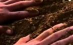 زوج يخرج جثمان زوجته من القبر تلبيةً لرؤيا في المنام