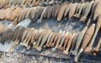 قنابل تم العثور عليها من طرف عمال شركة باقليم شفشاون