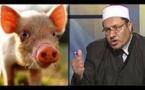 الخنزير والخمر حلال..والسيجارة لا تفطر في رمضان-فيديو