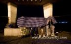 مغربيات يهربن أطفالهن إلى مليلية المحتلة