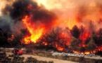 عاجل : اندلاع النيران وسط غابة كُورُوكُو