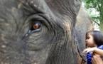 حديقة الحيوانات بالرباط: فيل يقتل طفلة في الثامنة من عمرها