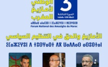 الأمازيغ والحق في التنظيم السياسي