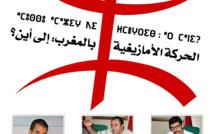 الحركة الأمازيغية بالمغرب، إلى أين؟